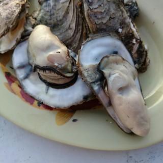 烤鮮蚵 -  龍井區 / 那兩蚵烤鮮蚵 (龍井區)|台中