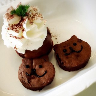 Brownies - Khlongtan Nuea's Purr Cat Cafe Club (Khlongtan Nuea)|Bangkok